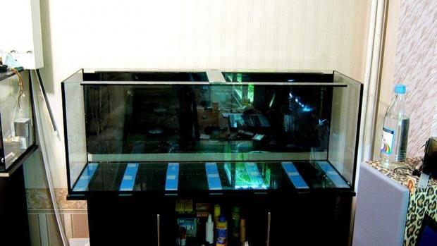 Main Aquas setUP