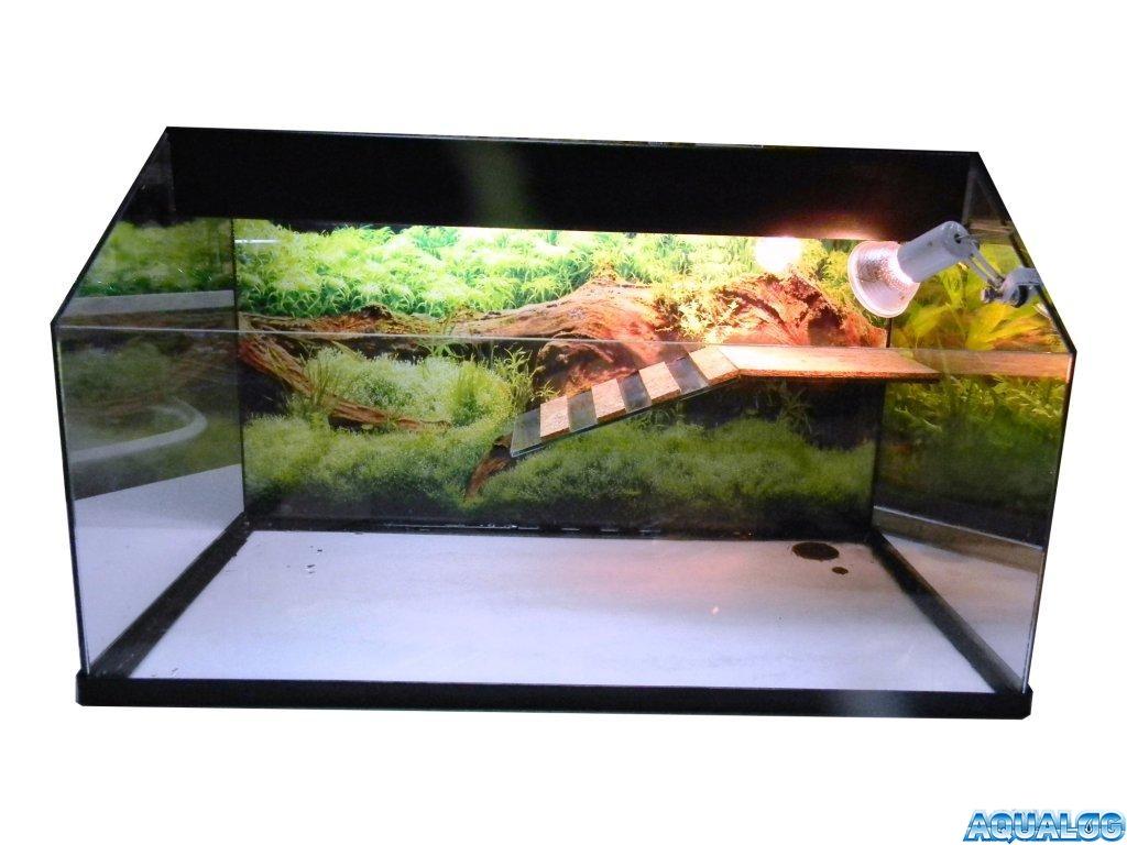aqater5.jpg
