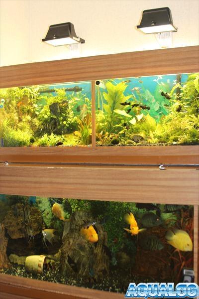 аквариумная стойка
