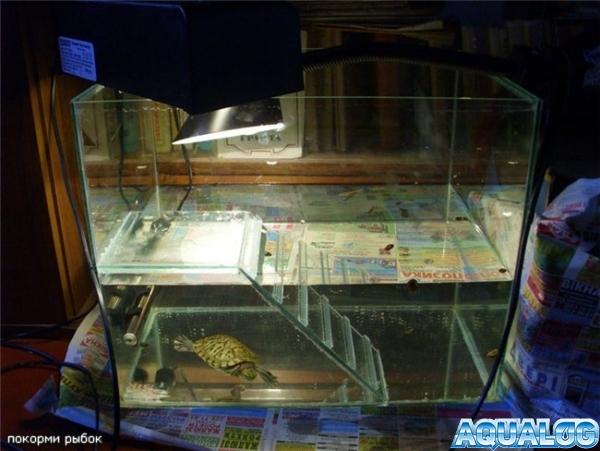 Островки в аквариуме своими руками 88