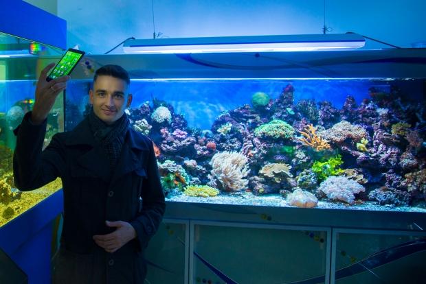Морской аквариум и Я