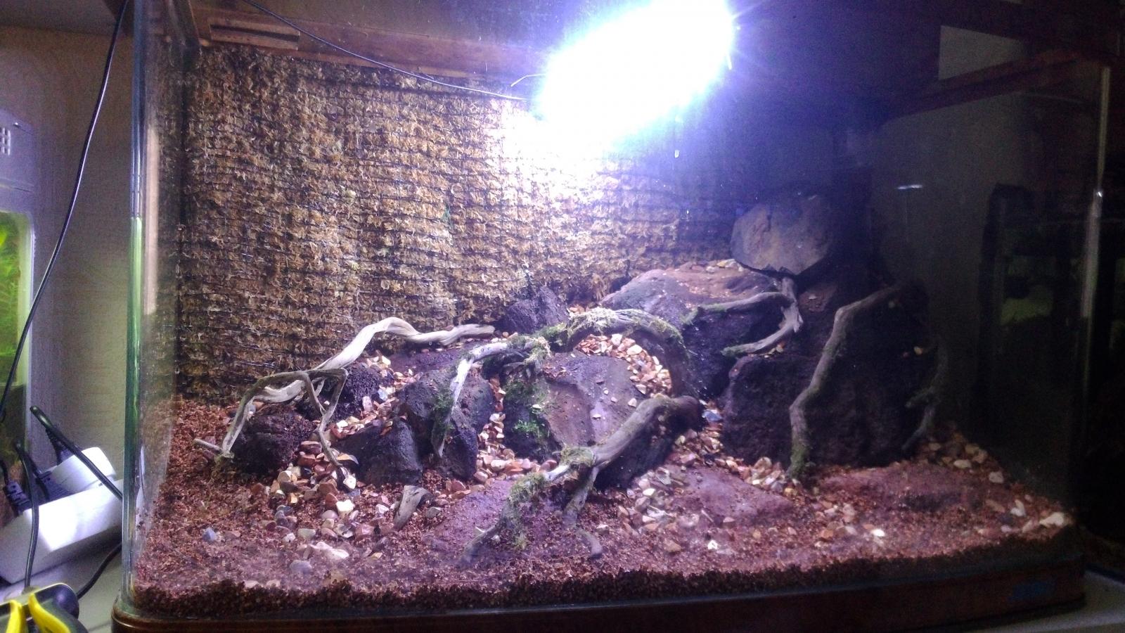 Мои аквариумы