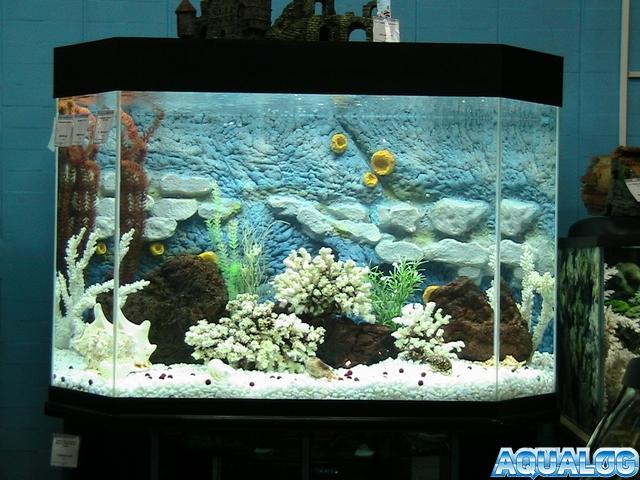 Фон аквариума