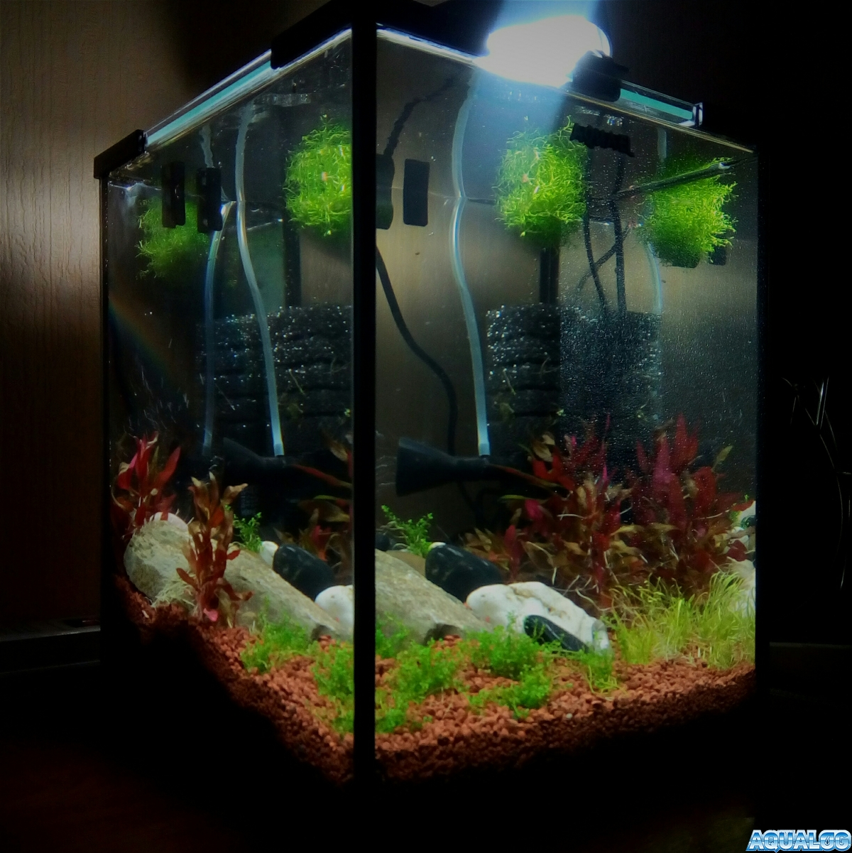 Кубик Aquael 20 литров