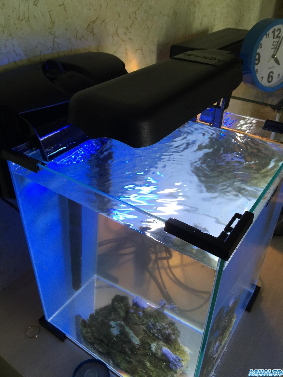 Nano reef 5