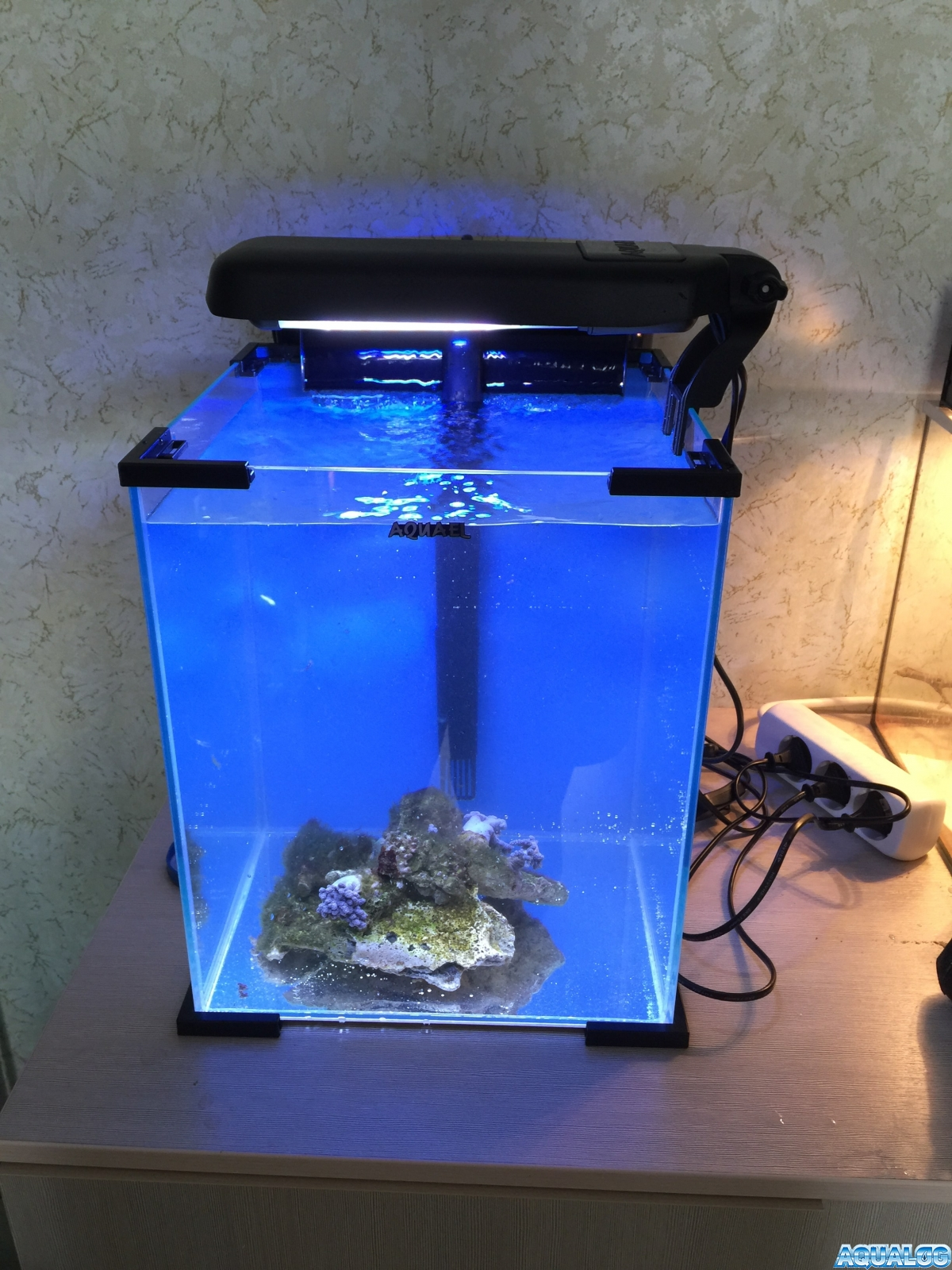 Nano reef 3